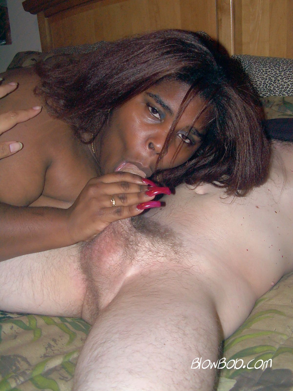 Ebony Bbw Bbc Sloppy Blowjob